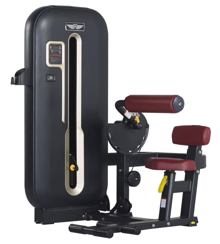 Gym Equipment Kolkata: Imported Gym Equipment Manufacturer In India