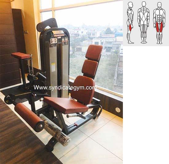 Gym Equipment Kolkata: Leg Curl And Leg Extension Manufacturer In India