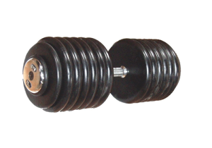 Plate Type Rubber Coated Dumbbell in India