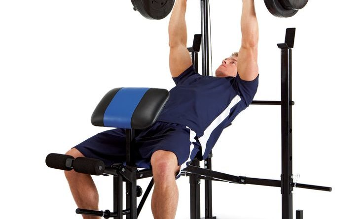 gym-equipments-manufacturer-in-punjab-736x445.jpg (736×445)