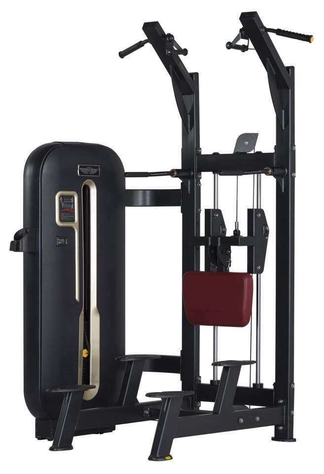 Imported Gym Equipment Manufacturer Amp Supplier India