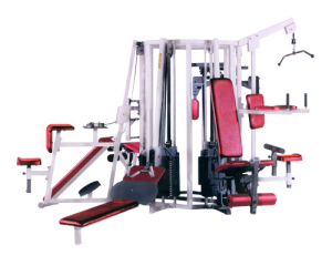 Eight Station Multigym Manufacturer In India Gym