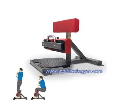 Sissy Squat Machine Manufacturer In India Gym Equipment